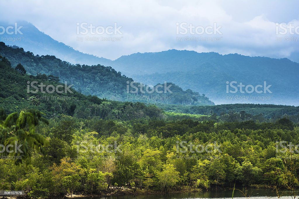 Mountains in tropical rainforest stock photo