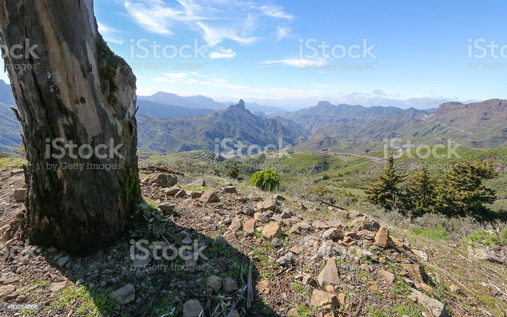 Mountains of Gran Canaria royalty-free stock photo