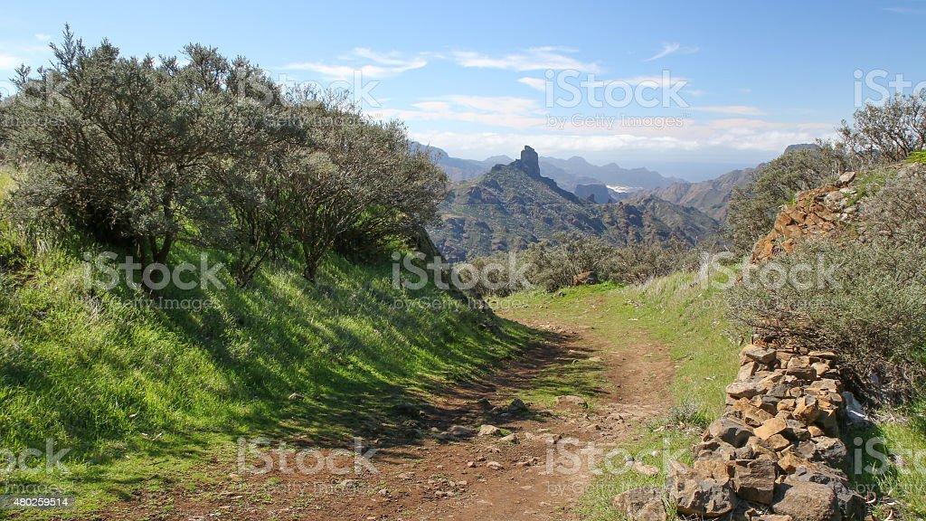Mountains of Gran Canaria royalty-free stock photo