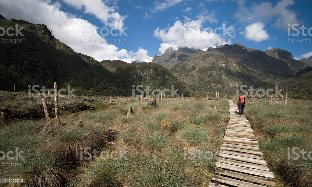 Mountains of the Moon royalty-free stock photo