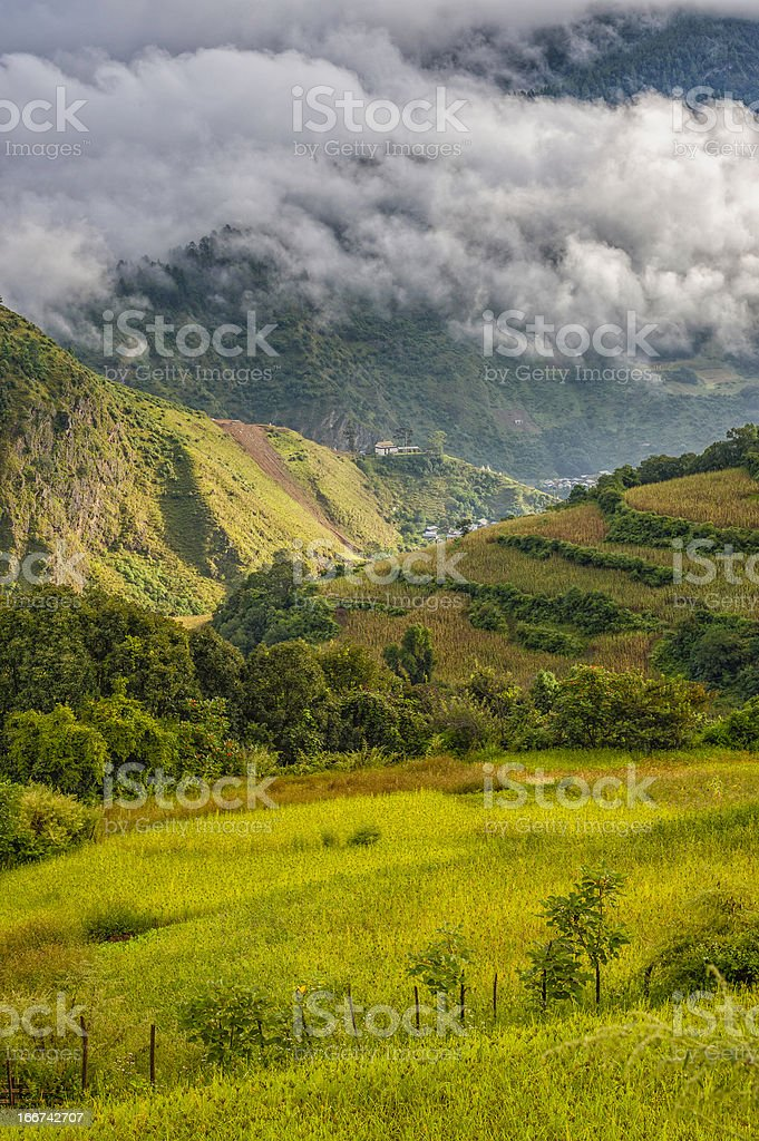 Mountains shrouded in clouds, Arunachal Pradesh, India. stock photo