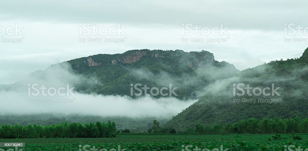 mountains under mist in the morning stock photo