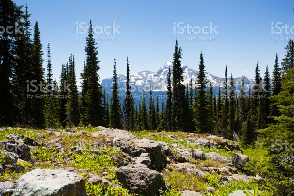 Mountainside stock photo