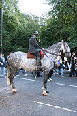 Mounted Metropolitan Police Officer