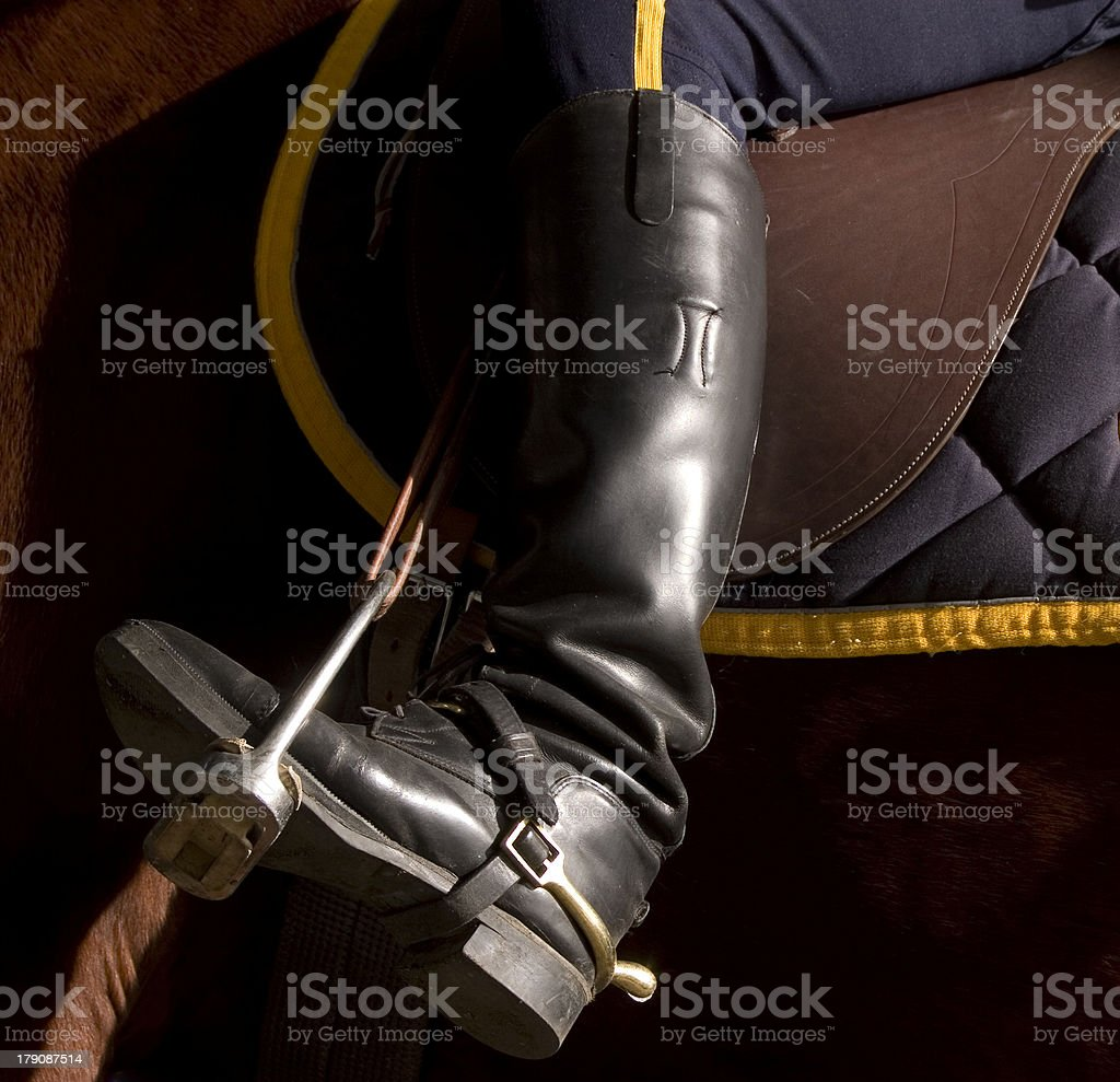 Mounted Police Patrol royalty-free stock photo