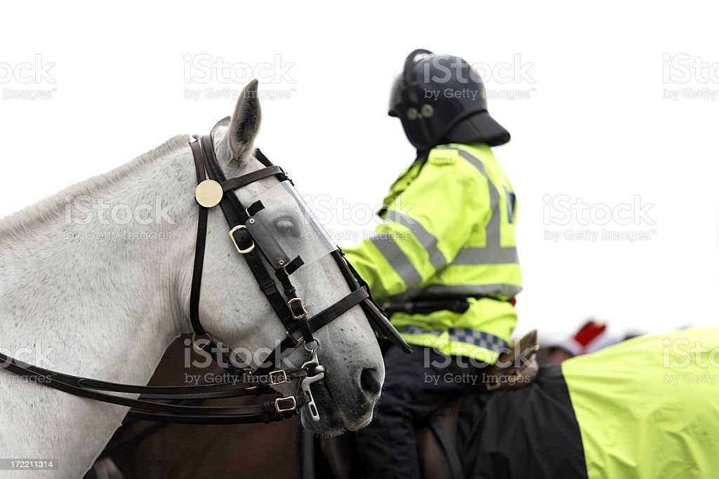 Mounted Police-Click thumbnails below for more... stock photo