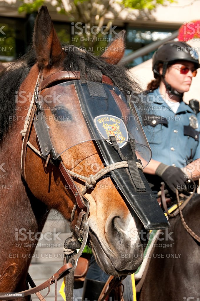 Mounted Seattle Police royalty-free stock photo