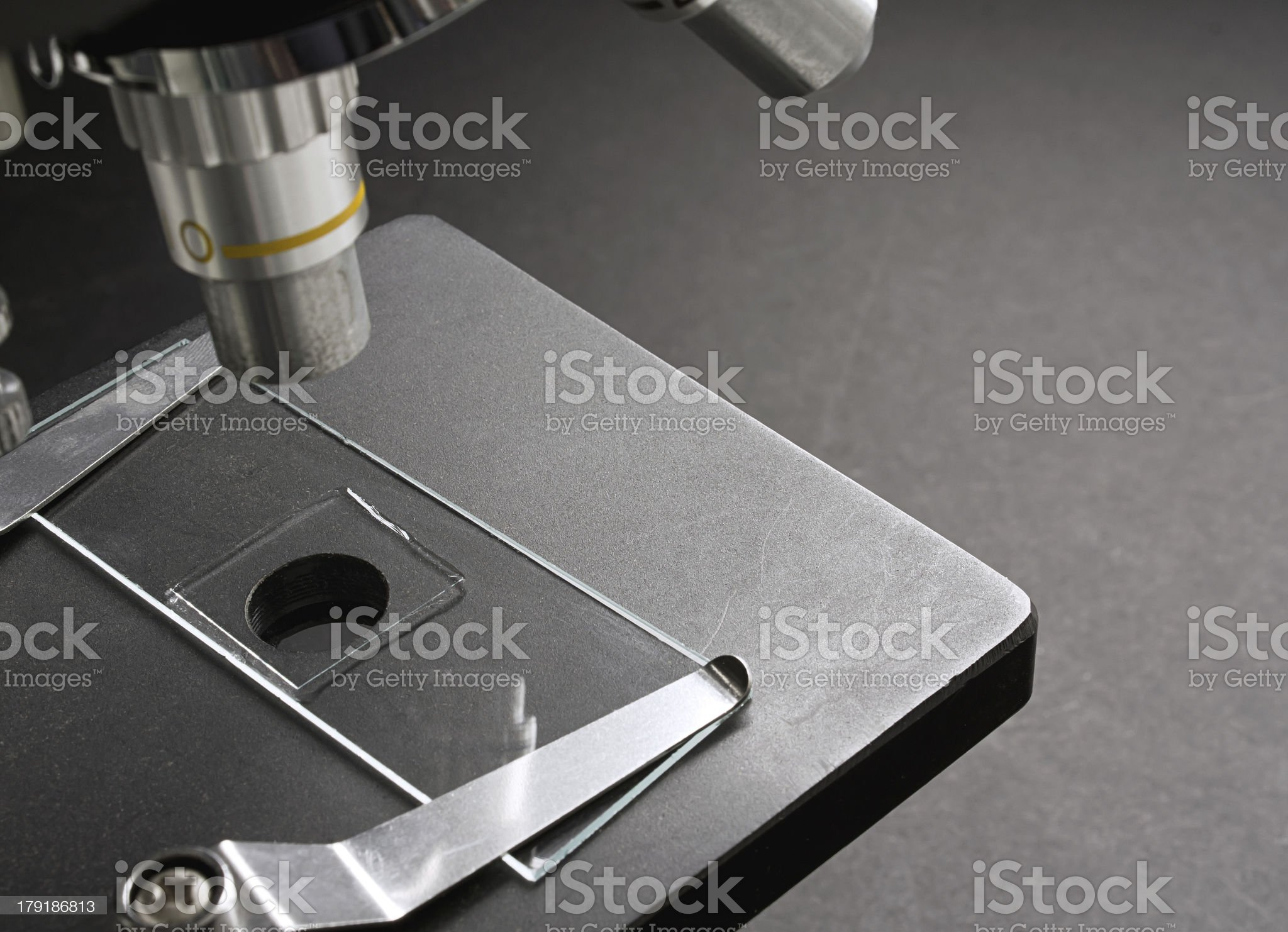 mounted slide on microscope royalty-free stock photo
