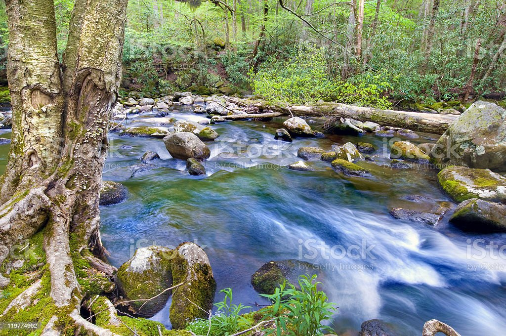 Mountian Stream royalty-free stock photo