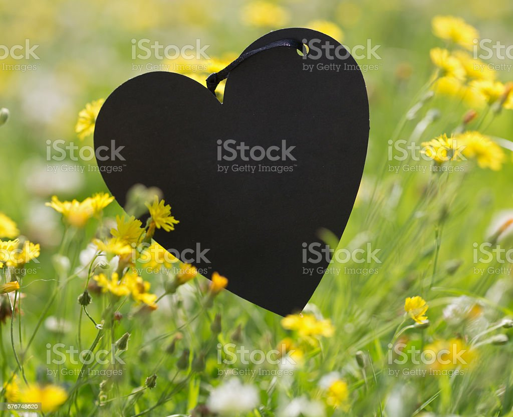 Mourning Heart stock photo