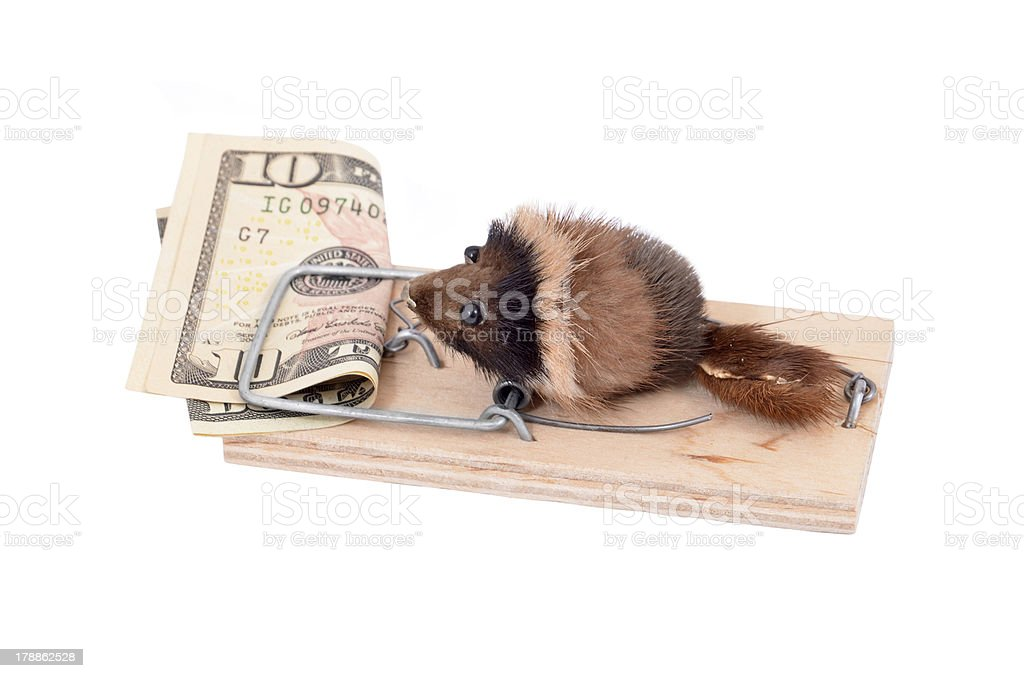Mouse and money in tap stock photo