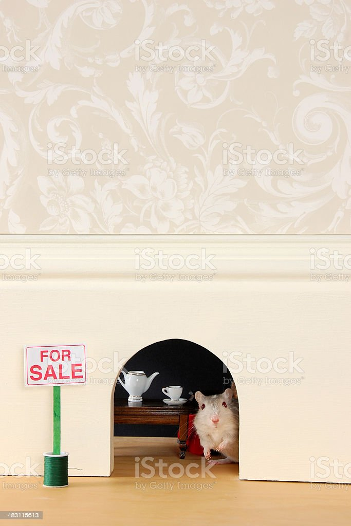 Mouse Hole For Sale royalty-free stock photo