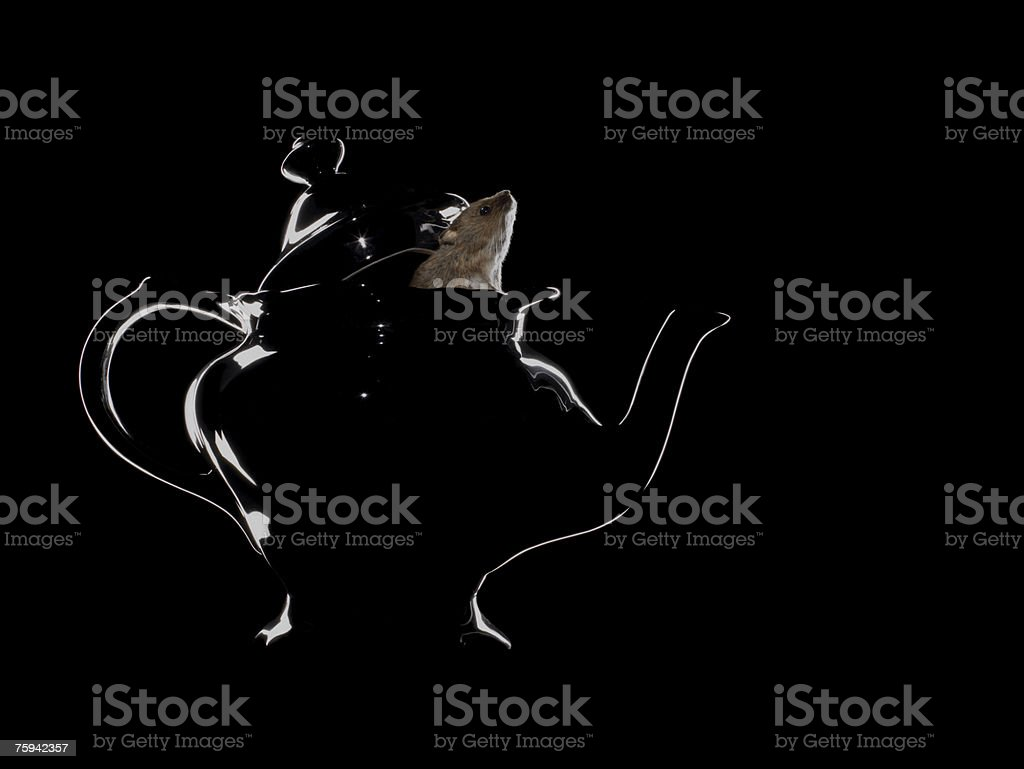 Mouse in a teapot stock photo