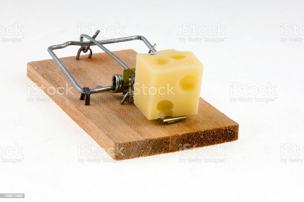 Mouse trap with cheese. Macro. royalty-free stock photo