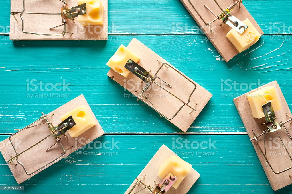 Mouse traps with cheese on turquoise table stock photo