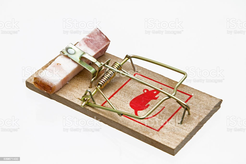 Mousetrap with bacon stock photo