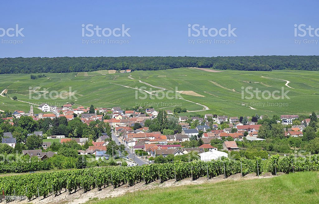 Moussy near Epernay,Champagne,France stock photo