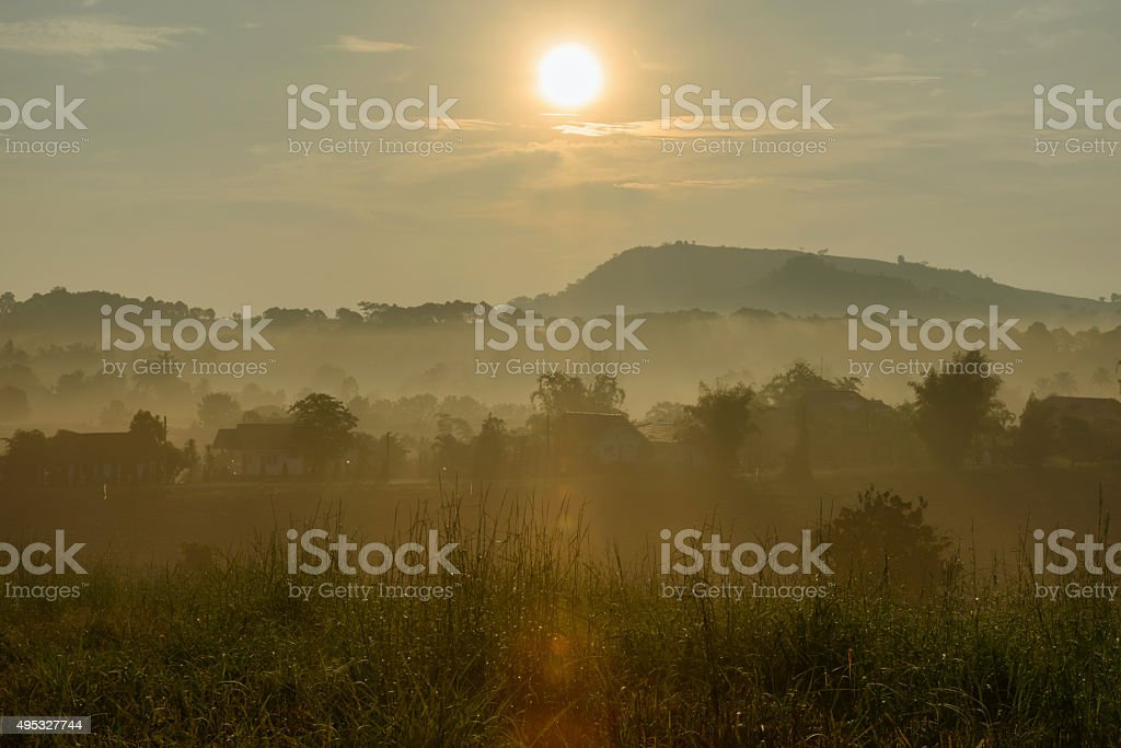 moutain and tree in Thailand royalty-free stock photo