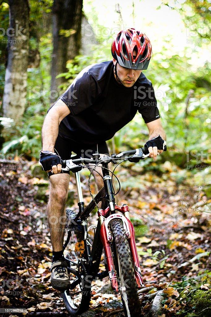Moutain biking down the trail royalty-free stock photo
