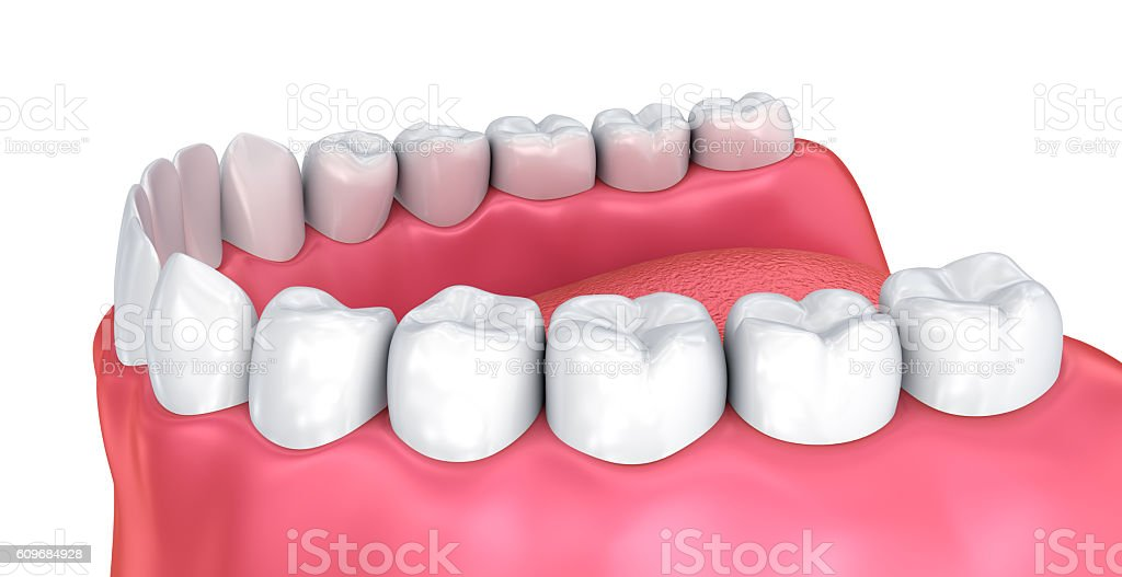 Mouth gum and teeth. Medically accurate tooth 3D illustration stock photo