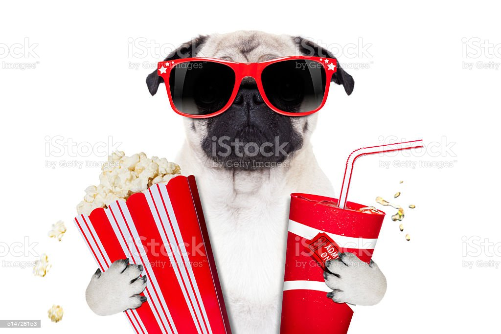 movie dog stock photo