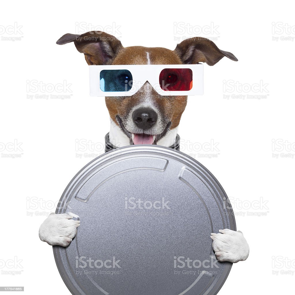 movie film canister 3d glasses dog royalty-free stock photo