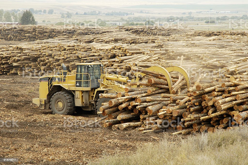 Moving Logs 1 royalty-free stock photo