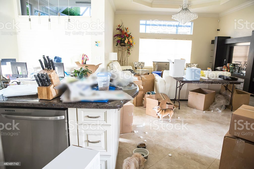 There are many unpacked cartons in the messy house. It looks chaotic...