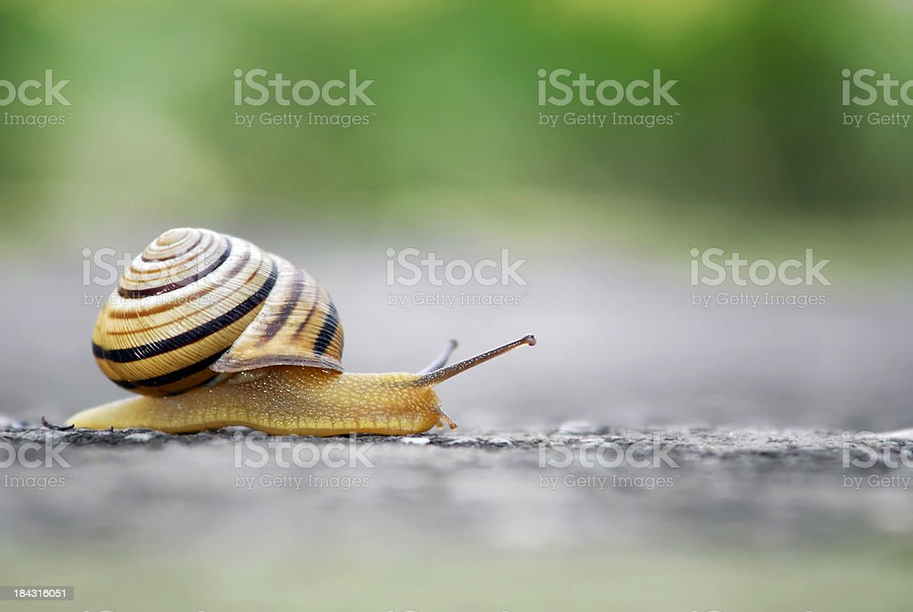 Moving slowly stock photo