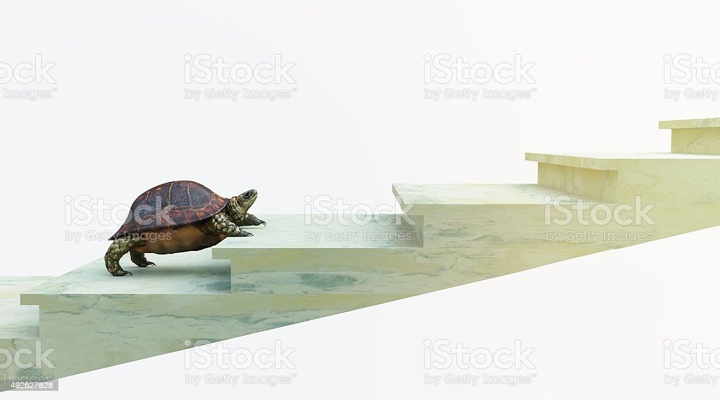 moving turtle wants to climb on the stairs concept background stock photo