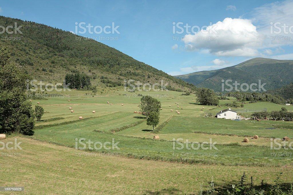 Mowed meadow in Pyrenees stock photo