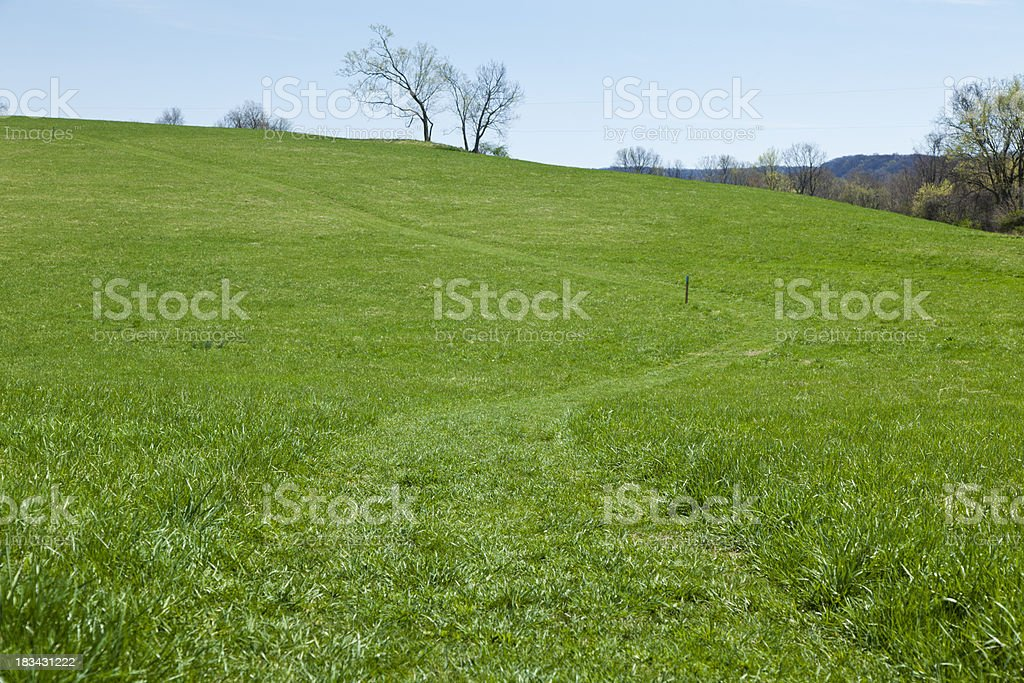 Mowed Path Through a Lush Green Hilly Field stock photo