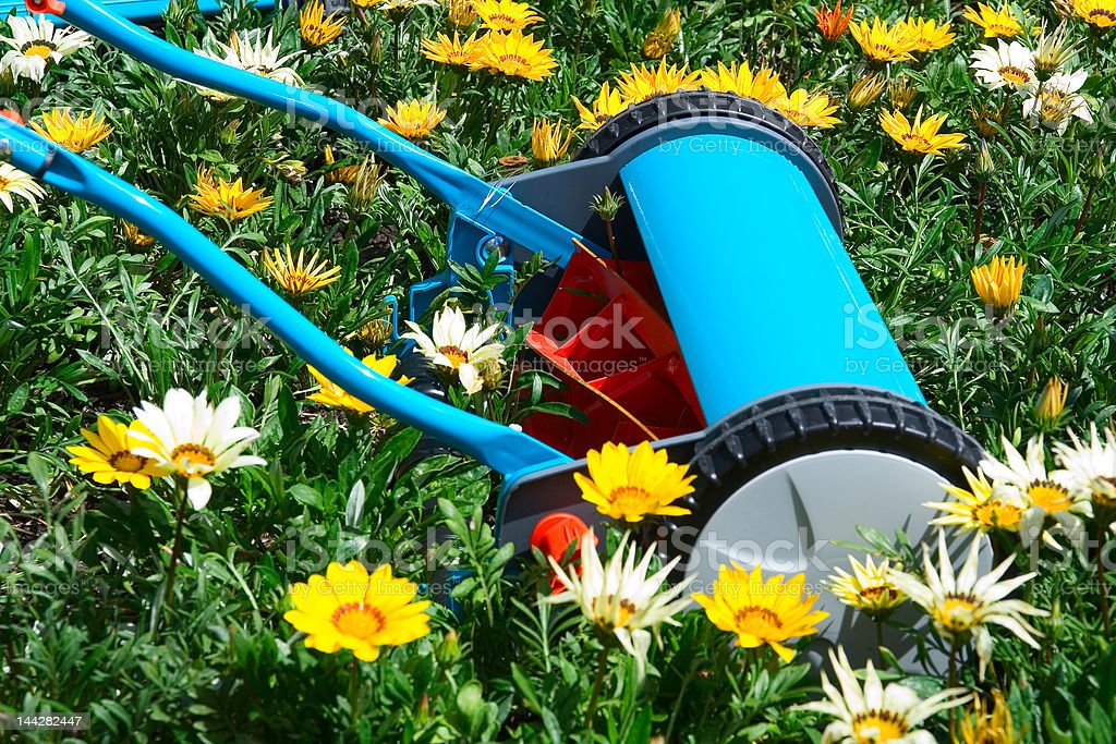 Mowing flowers stock photo