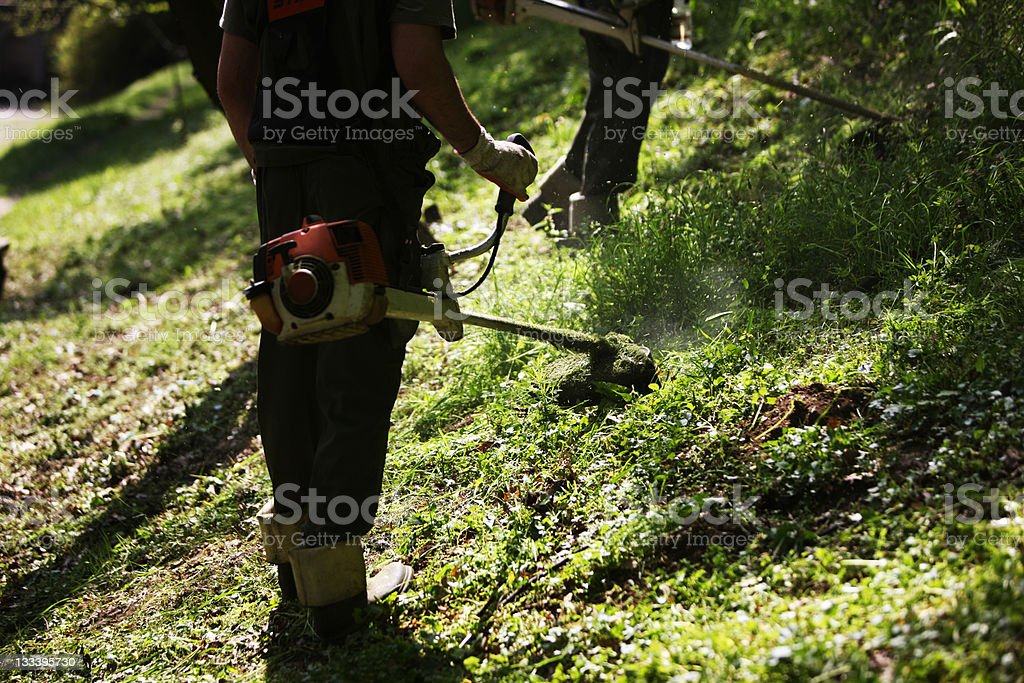 Mowing royalty-free stock photo