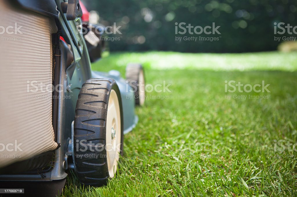 Mowing the grass red lawn mower stock photo