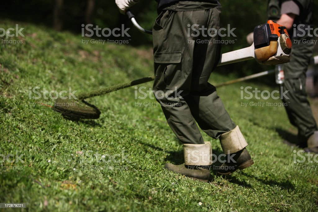 Mowing XXL royalty-free stock photo