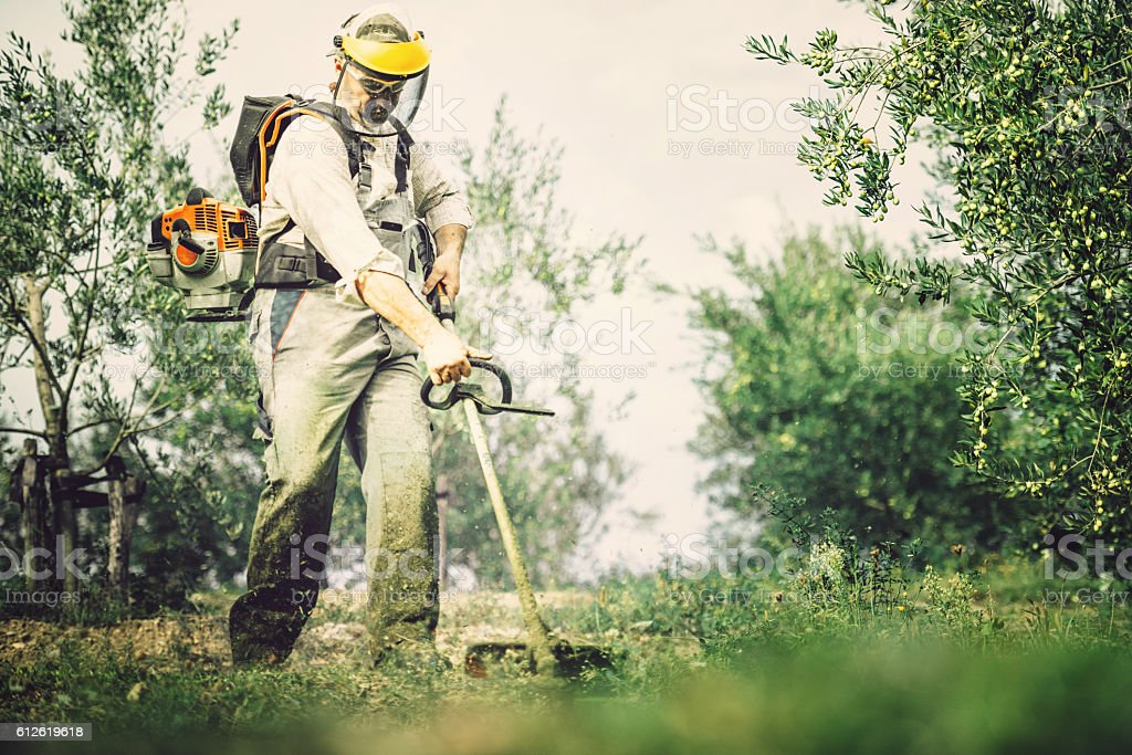 mows the grass stock photo