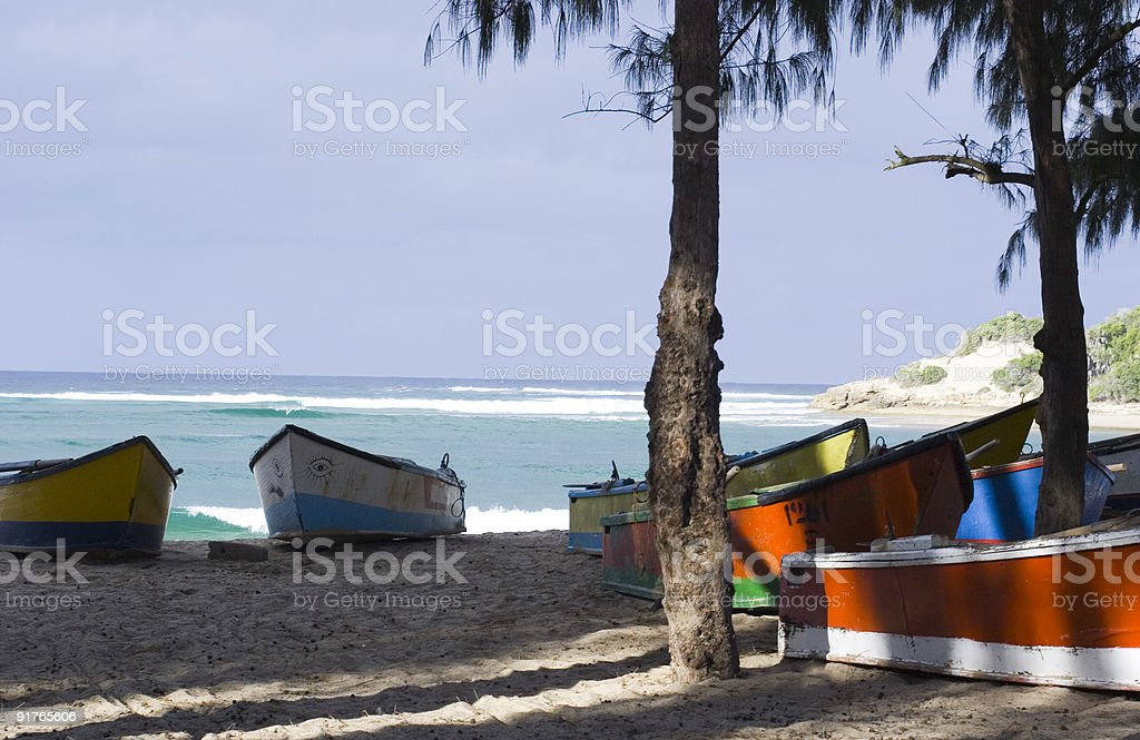 Mozambique fishing boats under trees on the beach stock photo