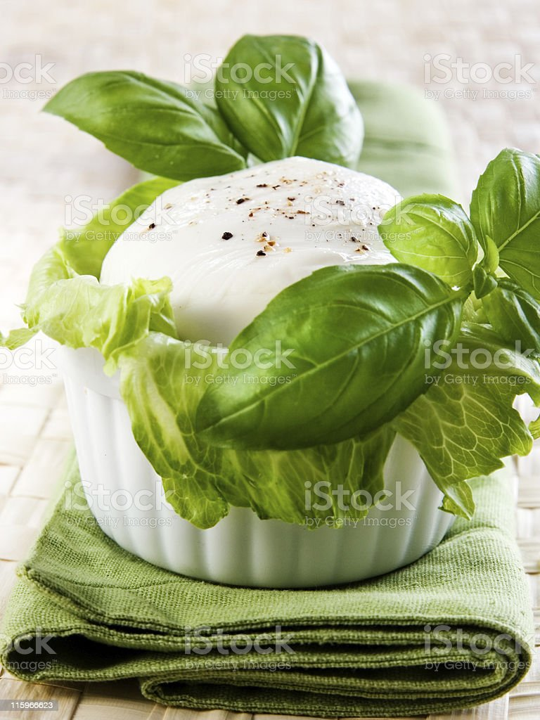 Mozzarella or burrata royalty-free stock photo