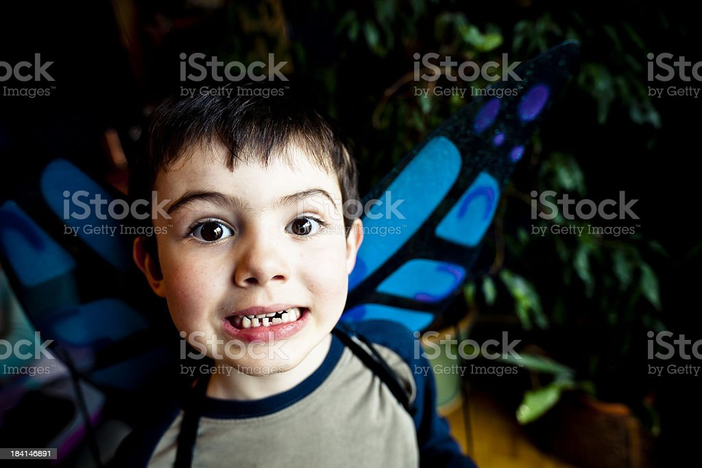Mr. Butterfly stock photo