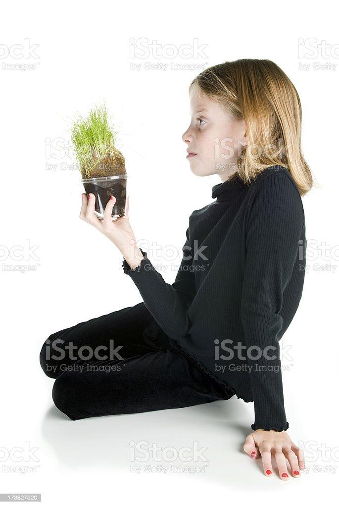 Herr Plant Lizenzfreies stock-foto