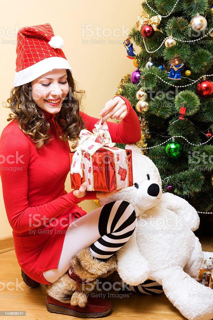 Mrs. Santa royalty-free stock photo