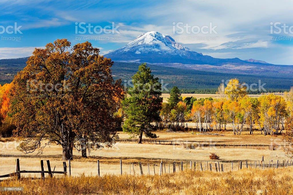 Mt Adams Washington stock photo