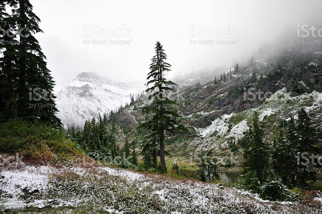 Monte Baker primera nieve foto de stock libre de derechos