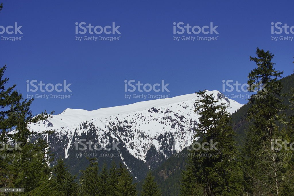 Mt. Baker Forest Peak royalty-free stock photo