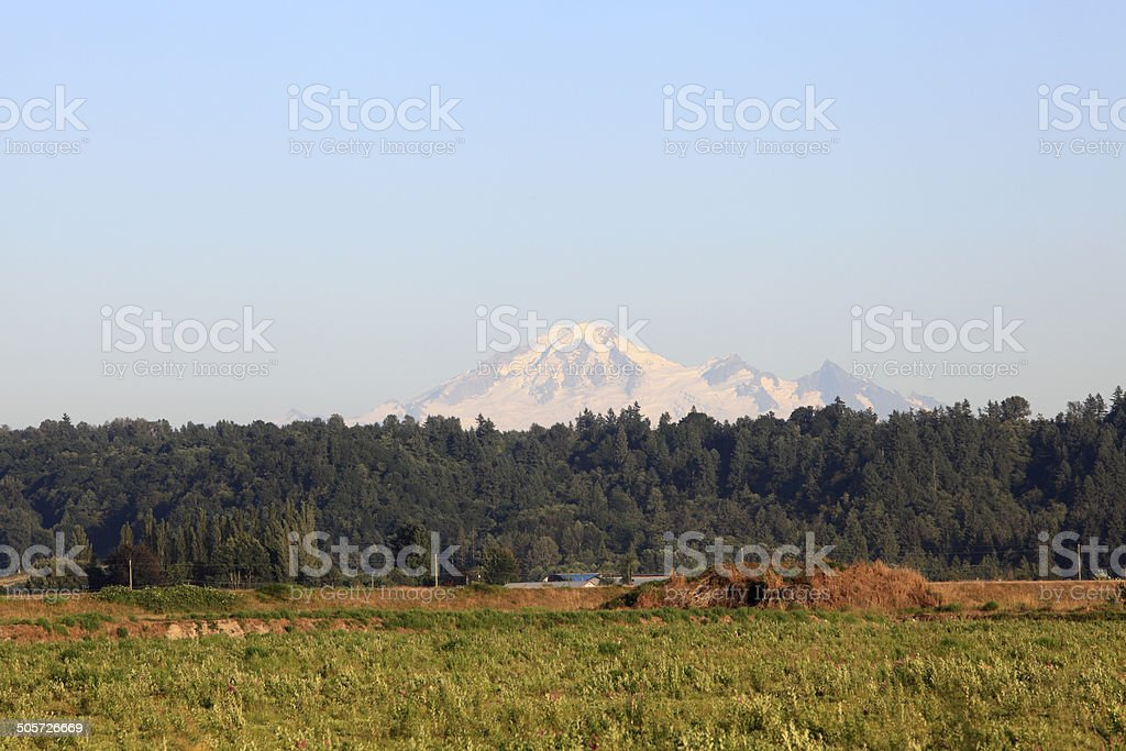Mt Baker Washington And The Rural Countryside stock photo