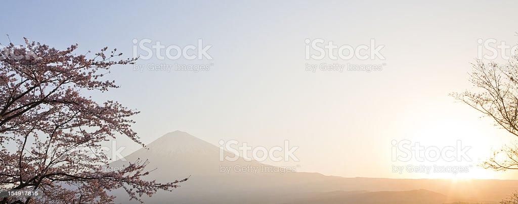 Mt Fuji in Spring stock photo