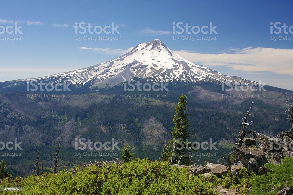 Mt hood in Oregon royalty-free stock photo