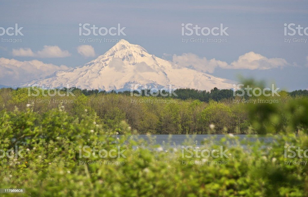 Mt Hood in Springtime stock photo