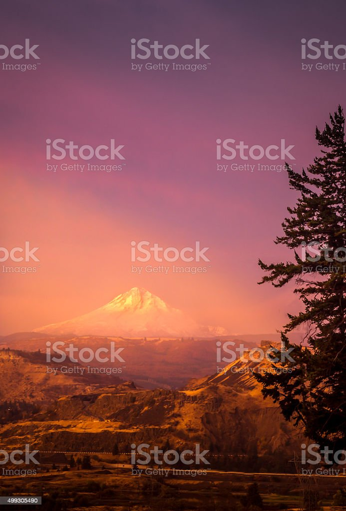 Mt Hood in the Morning stock photo